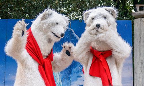 orsi-bianchii